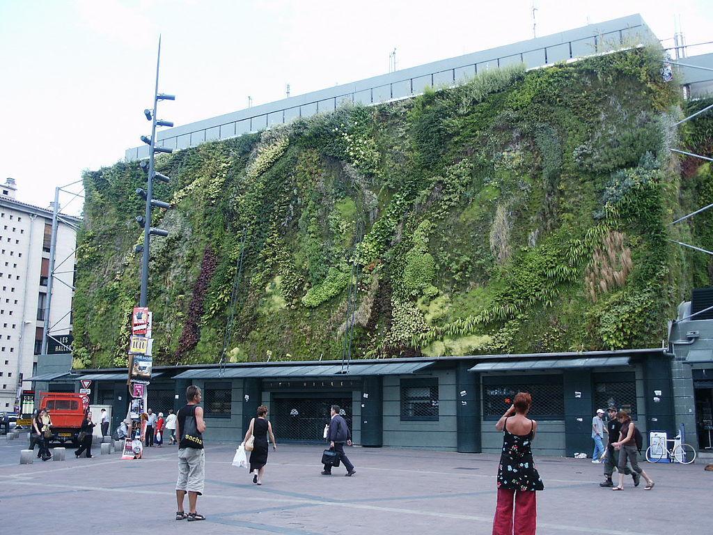 mur végétalisé avignon